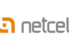 netcell iletişim aş IMEI paralel kayıt yönetim projesi